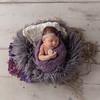 Aleeya Dixon Newborn (61)-Edit
