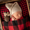 Mortenson, Frankie Newborn (200)-Edit-2