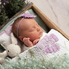 Johnson, Cora Jean Newborn (142)