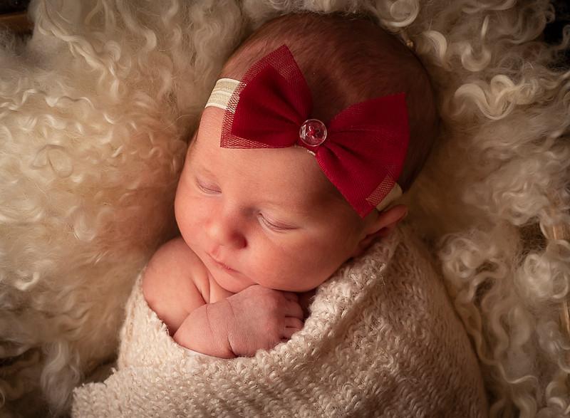 Mishler, Taylor Newborn (22)-2