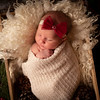 Mishler, Taylor Newborn (22)