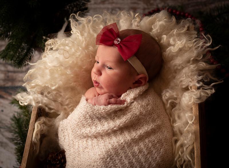 Mishler, Taylor Newborn (18)