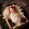 Mishler, Taylor Newborn (11)