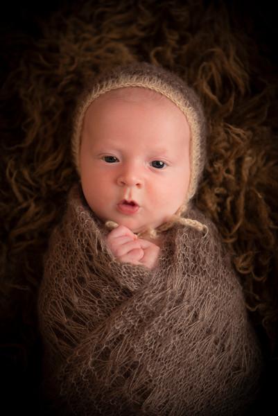 Wentz, Elliot Newborn (11)