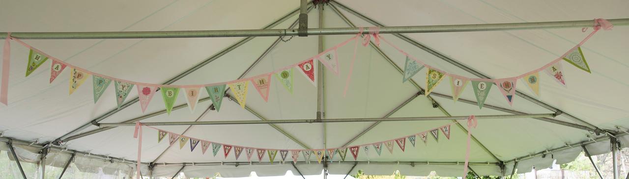 sienna-birthday-party-002-05122014