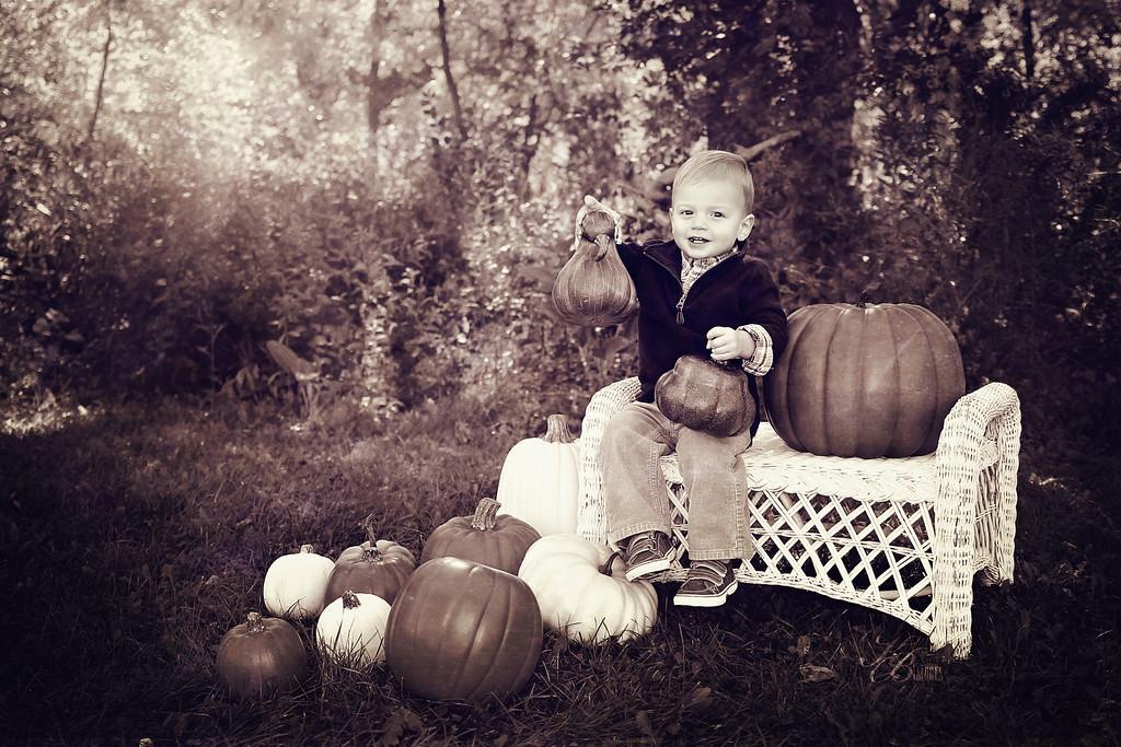_ Pumpkin (16) T-TX