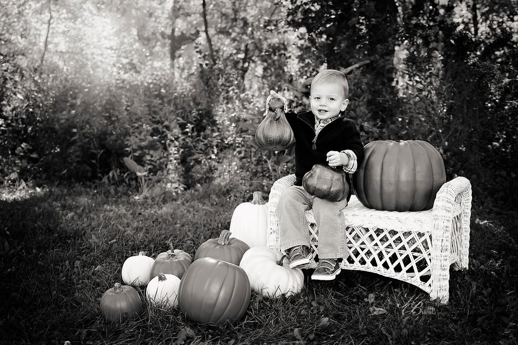 _ Pumpkin (16) BW-CONTRAST