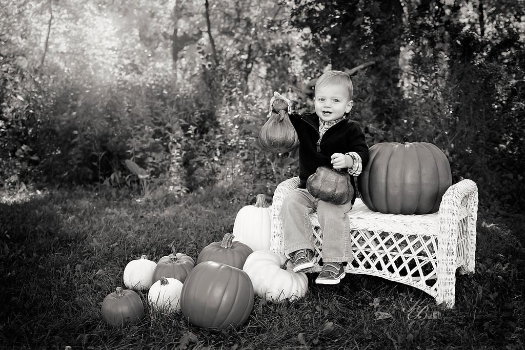 _ Pumpkin (16) BW