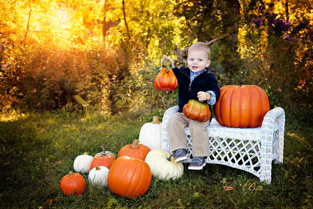 _ Pumpkin (16) C