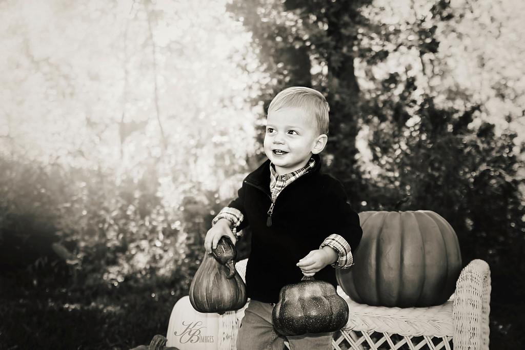 _ Pumpkin (23) BW-HZ