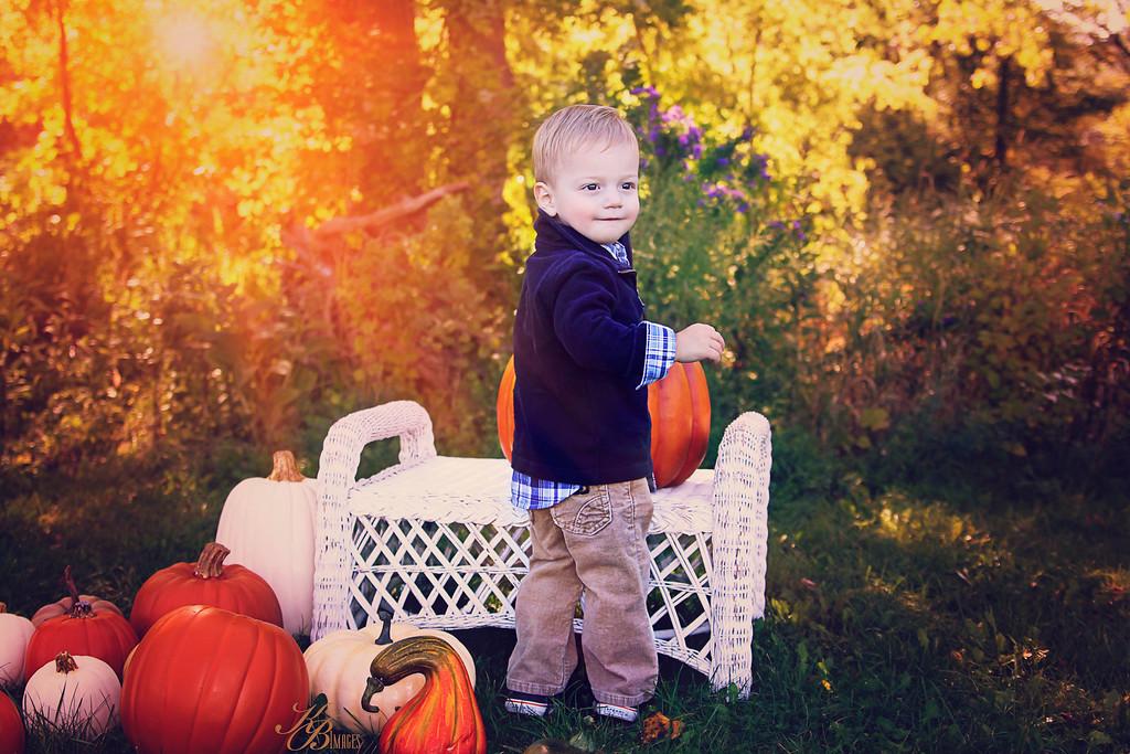 _ Pumpkin (24) C