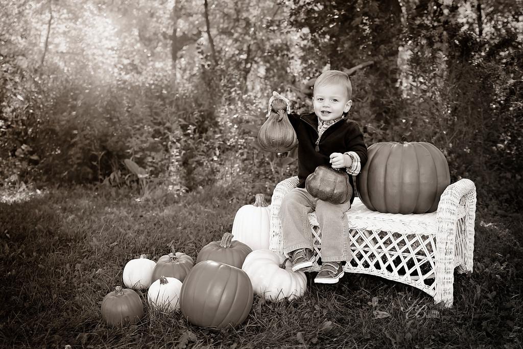 _ Pumpkin (16) S