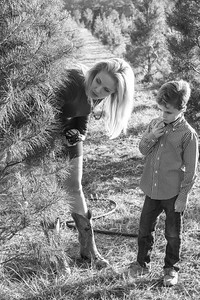 The Culbreths visit Songer's Christmas Tree Farm