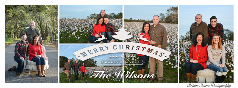 merrychristmas from the wilsons