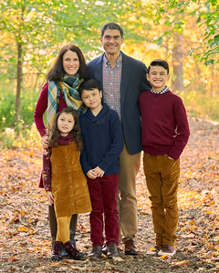 The Wong Family