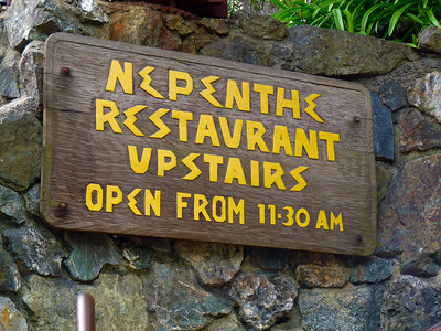 Nepenthe sign