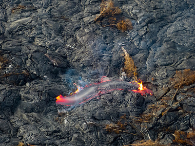 Lava flow on Kilauea. Those are entire trees, not branches.