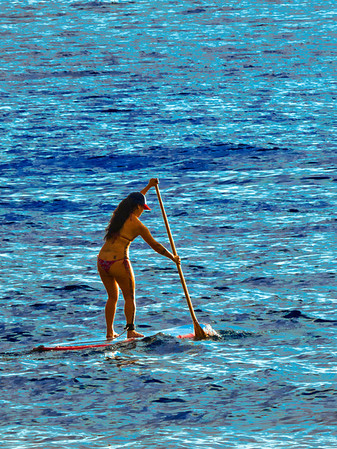 Our morning paddle boarder doing her thing in the cove by our house.