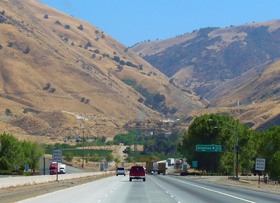 Entering the Grapevine