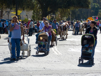 "The annual Portuguese ""Our Lady of Fatima"" Celebration parade in Thorton, CA."