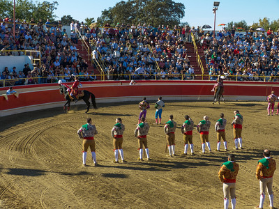 The Cavaleiros & their Portuguese Lusitanos are introduced to the crowd in the bullfight arena.