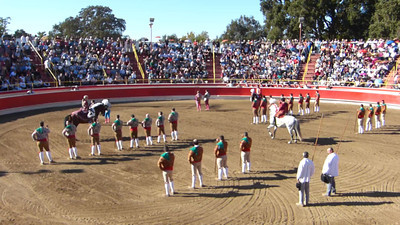 A video of a portion of the mounted introduction of the cavaleiros in front of the Forcados and Campinos.