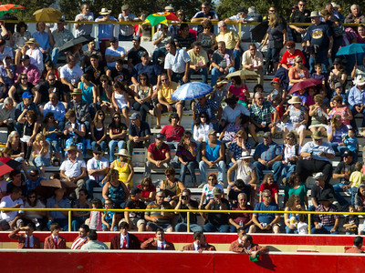 """The crowd is ready for the bullfights to start in the arena at the annual Portuguese """"Our Lady of Fatima"""" Celebration in Thorton, CA."""