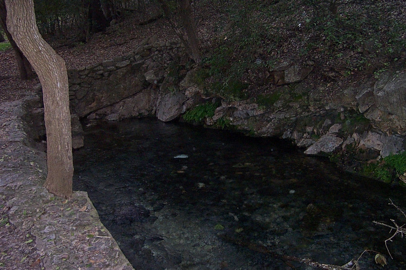 This is one of the springs bubbling up in Landa Park.  There are dozens of springs here, large and small.