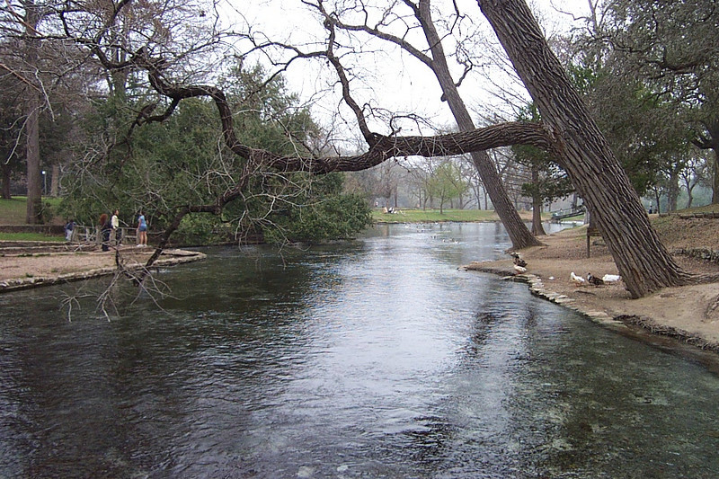 "This is more of the flow from the springs in Landa Park.  After pooling in the lake, this water flows out the other side as the Comal River, which is extremely popular with inner-tubers.  The Comal is billed as ""the largest shortest river in the world.""  It ends about 2.5 miles after it starts, when it flows into the larger Guadalupe River."