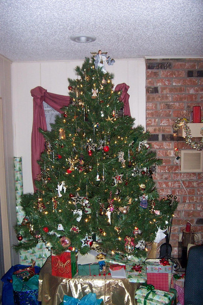 Our Chirstmas tree.  I decorated it all by myself (he said modestly).