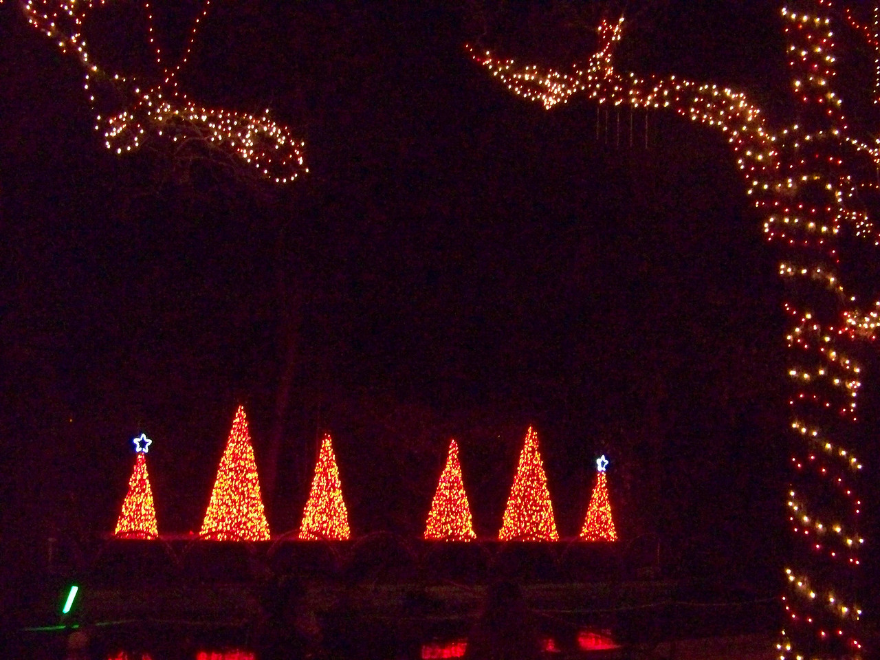 "In one section by the river, they had grandstands set up.  Every 15 minutes, an animated light show performed with the lights synchronized to various tunes.  I shot a video of the lights performing to Josh Groban's O Holy Night, which you can see at <b><a target=""_blank"" href=""http://www.youtube.com/watch?v=giZieqHgGY0"">this link.</a></b> [Schlitterbahn's Hill Country Christmas 2009]"