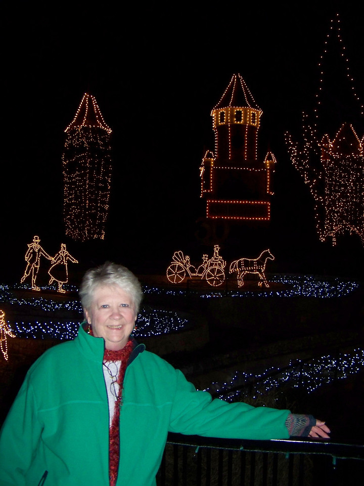 Sheri and I went and checked out Schlitterbahn's Hill Country Christmas.