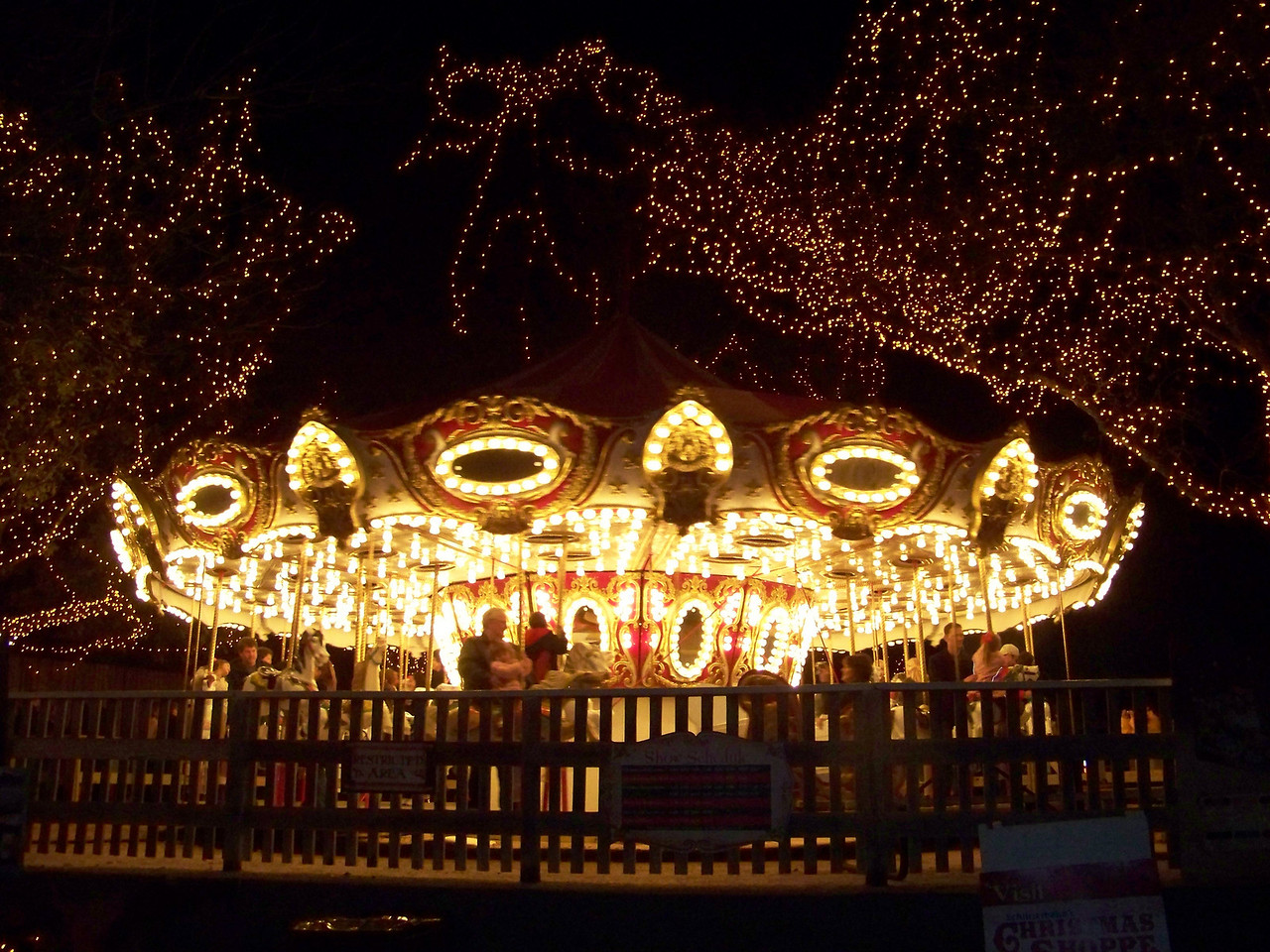 They had a few kiddie rides operating, including this lovely carousel.<br /> [Schlitterbahn's Hill Country Christmas 2009]
