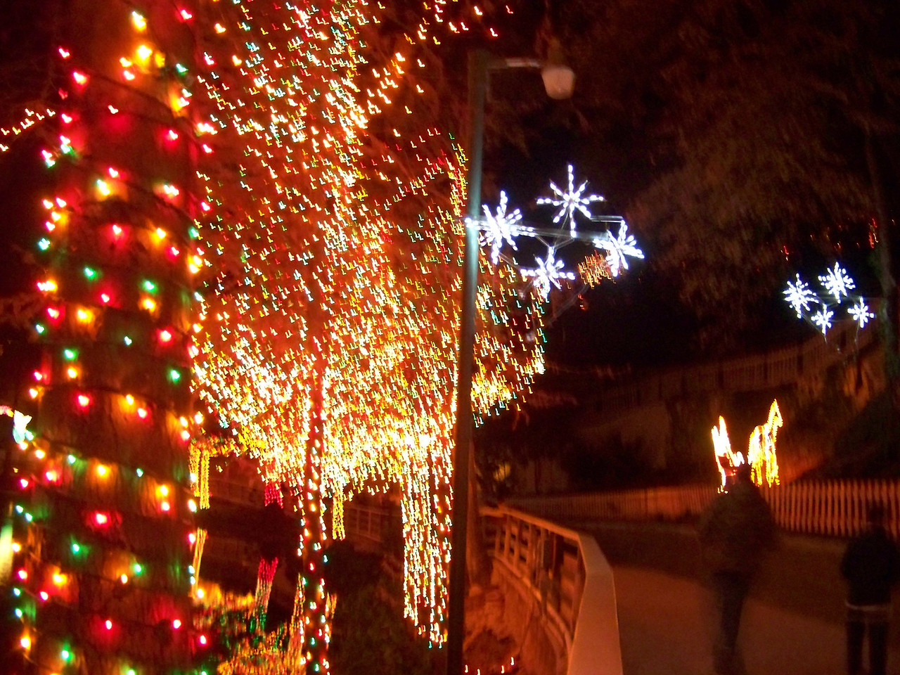 More lights along the path on the bank of the Comal River.<br /> [Schlitterbahn's Hill Country Christmas 2009]