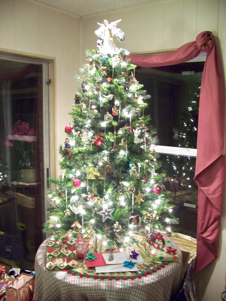 Dad bought a new, small, artificial Christmas tree this year that had the lights built in.  Decorating the tree is usually my job, and not having to deal with the lights made it <b><i>much</i></b> easier to put up than his previous one!  This shot was taken without the flash.