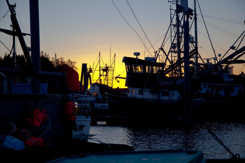 Quiliute marina at sunset