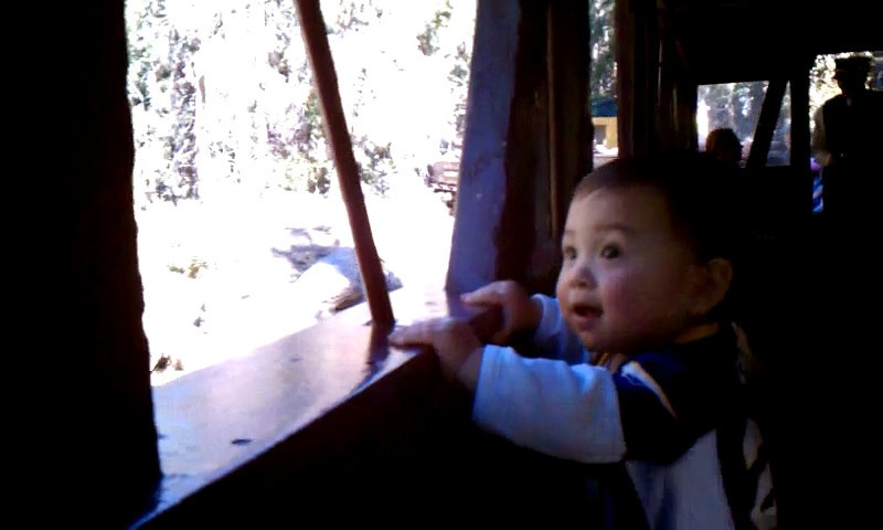 We went on an open-air train ride in the mountains. The boys loved it!