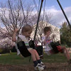 Another clip from the playground. Swinging boys.