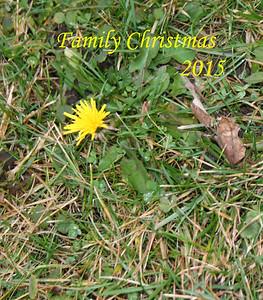 Family X-mas 2015