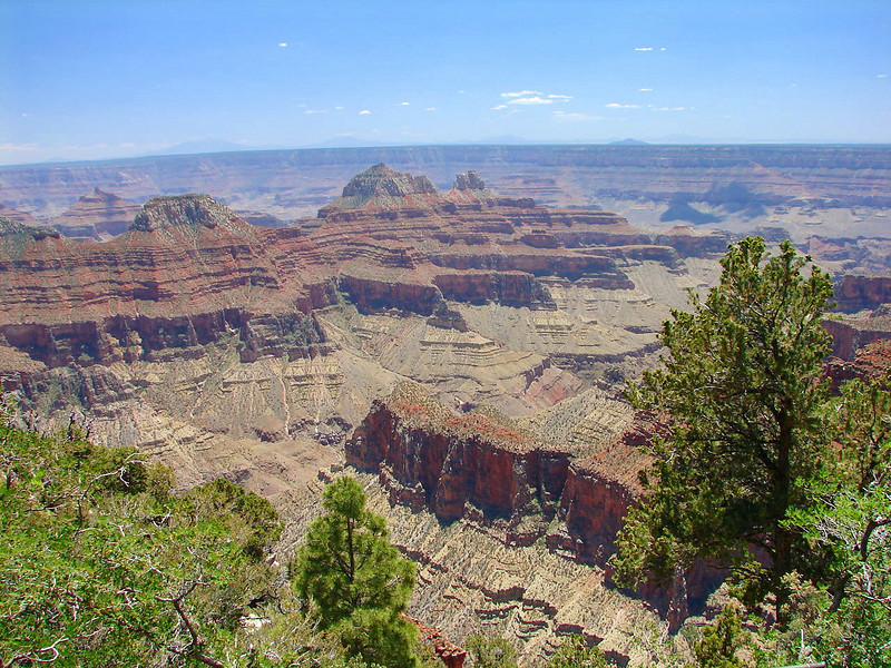 Here is a view into the canyon taken from the West Veranda.