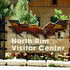 "The North Rim ""village"" consists of the Grand Canyon Lodge, Deli in the Pines, the RoughRider Saloon, Bookstore and Giftshop, the Campground and General Store, the Post Office, and all of the Cabins."