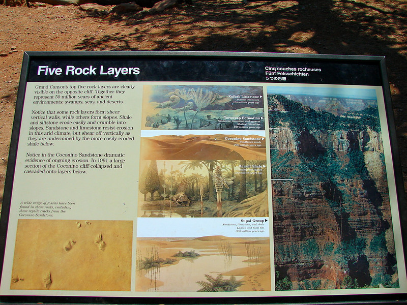 We were impressed by the different layers of rock found in the Grand Canyon. The third layer, Coconino Sandstone was formed 270 million years ago.