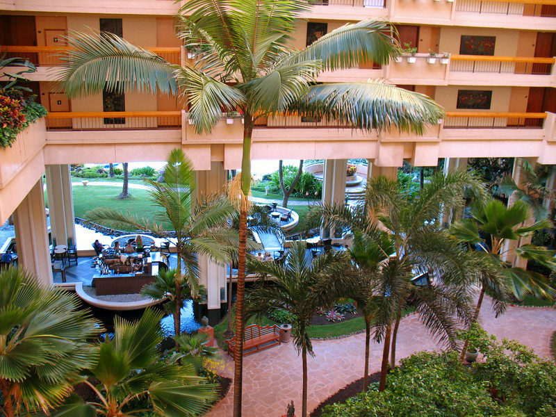 The palm trees within the atrium consist of various species and they are beautiful.