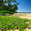 Ka'anapali Beach.