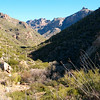 01/13/08: Sabino Canyon