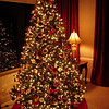 The 2006 Christmas Tree