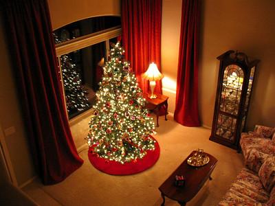 The 2008 Christmas Tree.