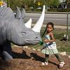 Amara challenges the rhino