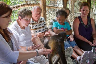 Amara and Adrik and the Monkeys