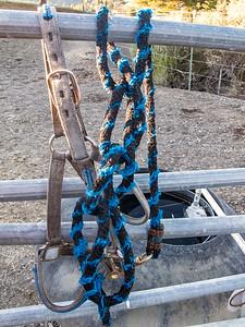 Briones Horse Ranch